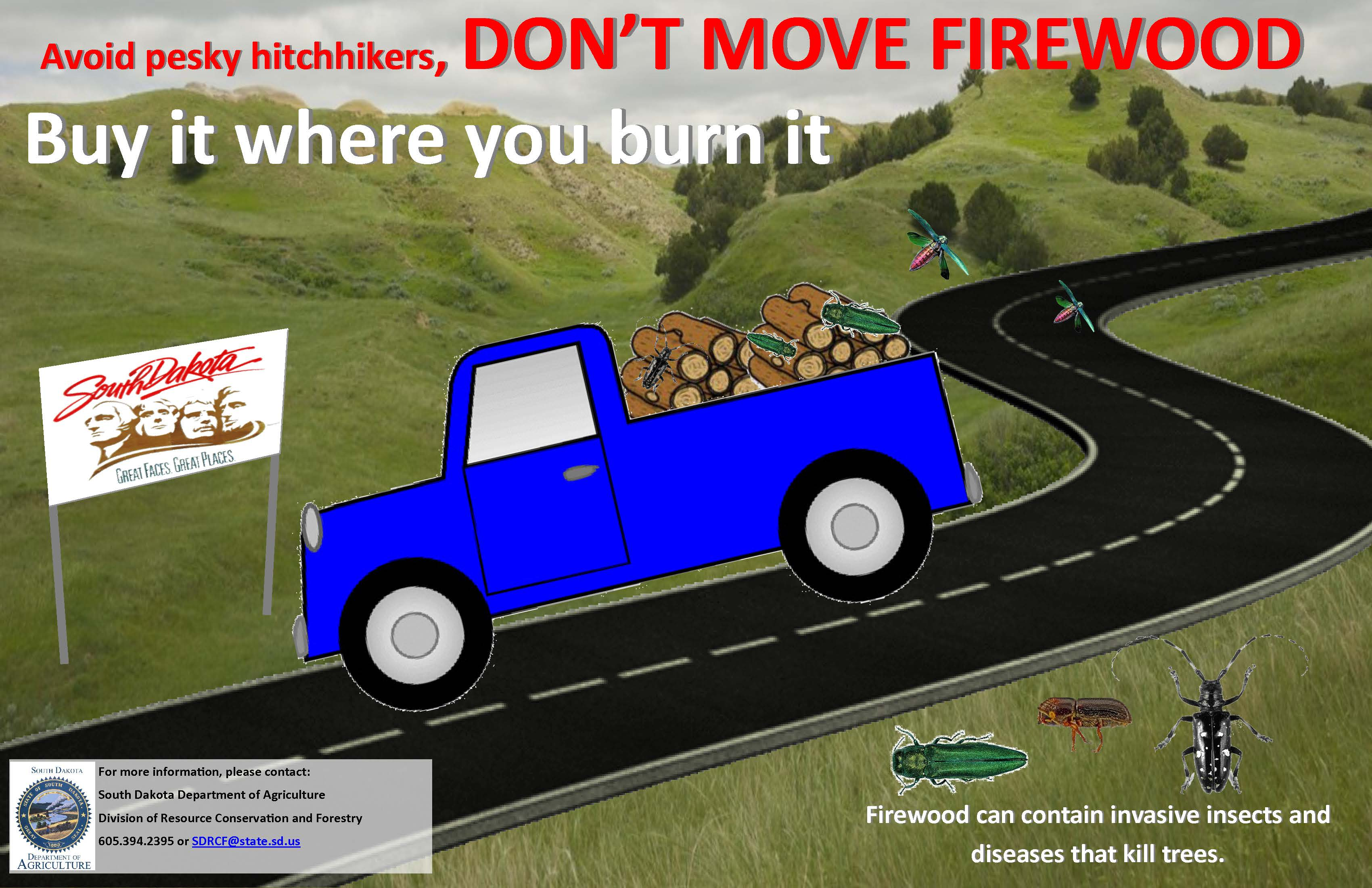 Don't Move Firewood Poster